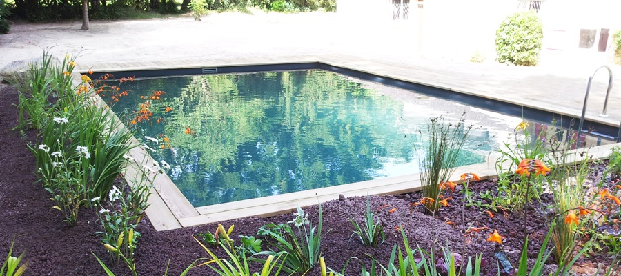 piscine-paysagee-PatrickLemairePaysage